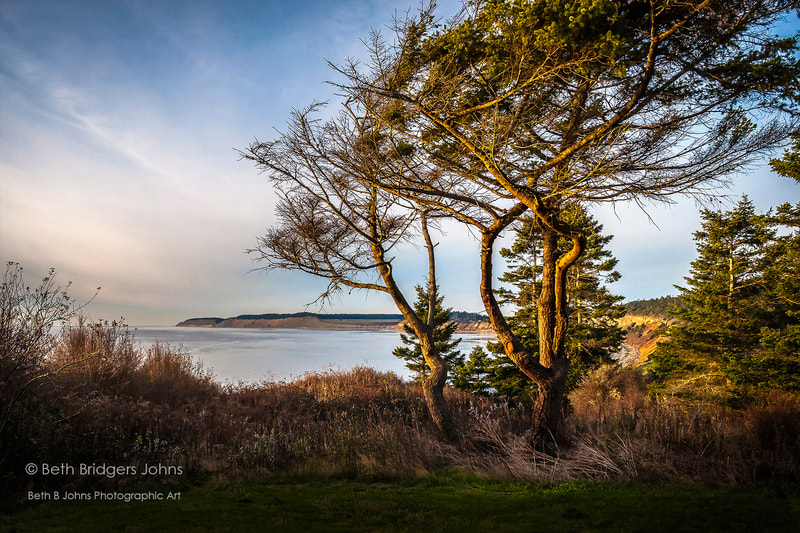 Admiralty Head, Ebey's Landing, Beth B Johns Photographic Art