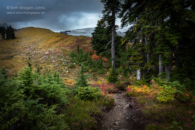Mount Baker, Railroad Grade Trail, Beth B Johns Photographic Art